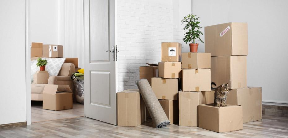 اولین لیست لوازم ضروری آپارتمان برای تازه عروس و داماد چیست؟